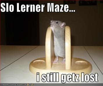 slow learner 3